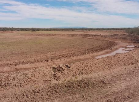 Día Mundial de Lucha contra la Desertificación y la Sequía, 17 junio 2020