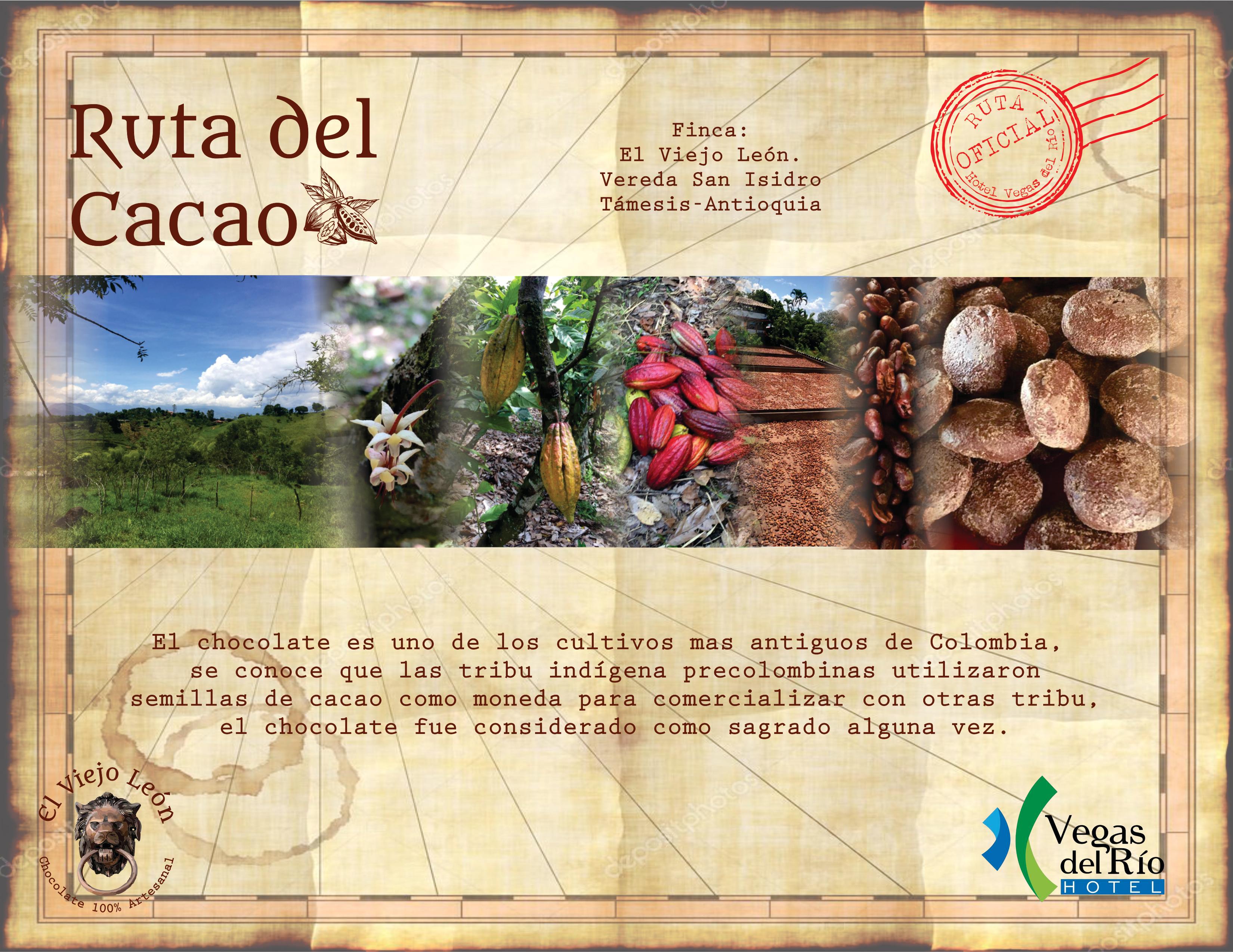 ruta cacao 1