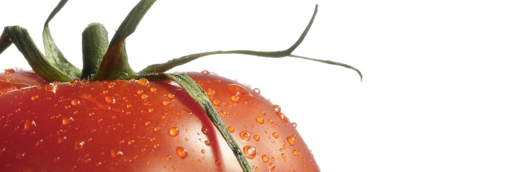 NK19543_Glasnische_TOM_Motiv__Tomato__oh