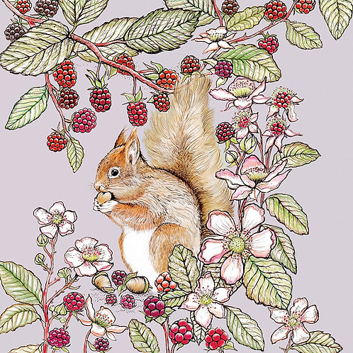 Athelhampton gift shop dorset greetings card and envelope in the wild squirrel