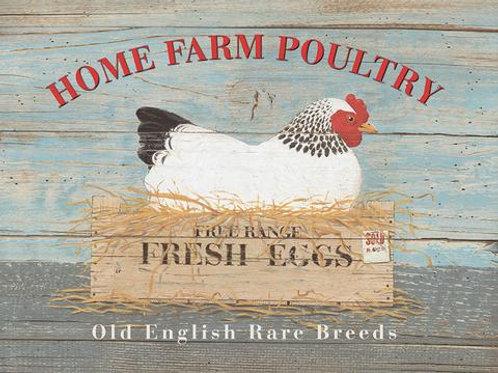 Athelhampton gift shop dorset fridge magnets humour home farm poultry chickens