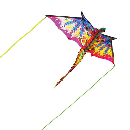 Athelhampton gift shop house of marbles children dragon kite large