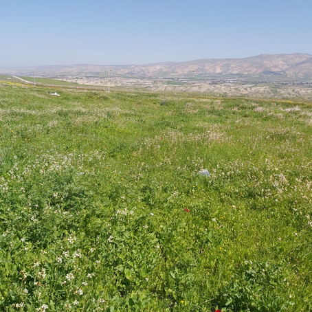 Sovereignty over Jordan Valley crucial to ensure Israel's survival
