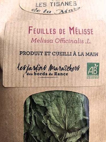 Tisane de feuilles de Mélisse
