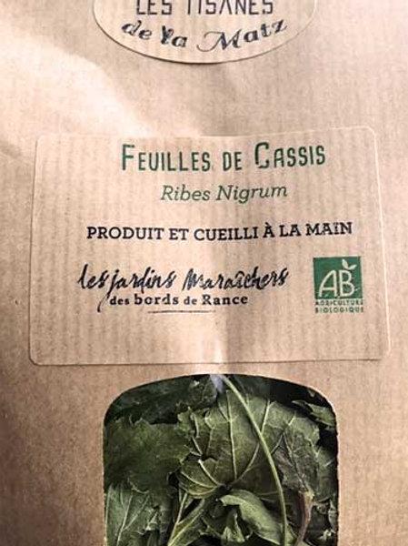 Tisane de feuilles de Cassis
