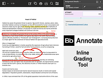annotate2.png