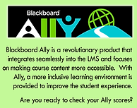 Ally Blurb.png