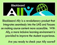 Ally Blurb.png