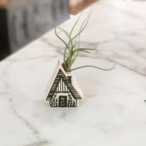 Cottage Air Plant Holder by Magpie Mischief