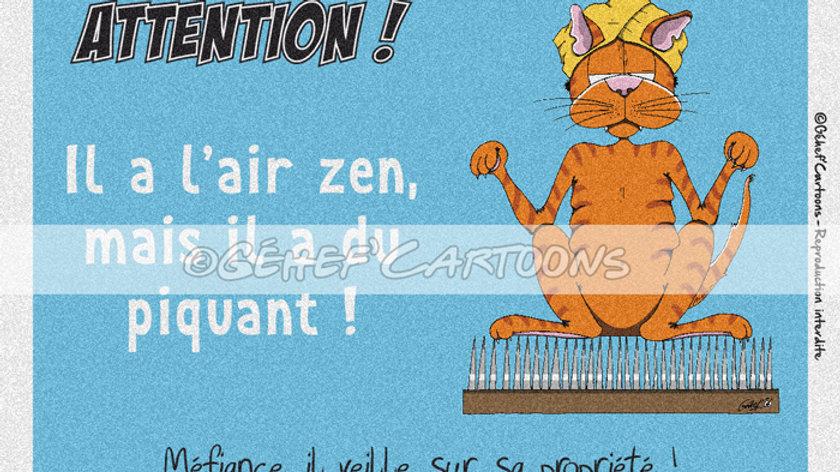 "Plaque CHAKIR PIQUANT - Collection ""Coussinets"""