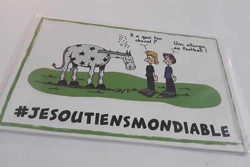 """Plaque humoristique """"Allergie au football"""""""