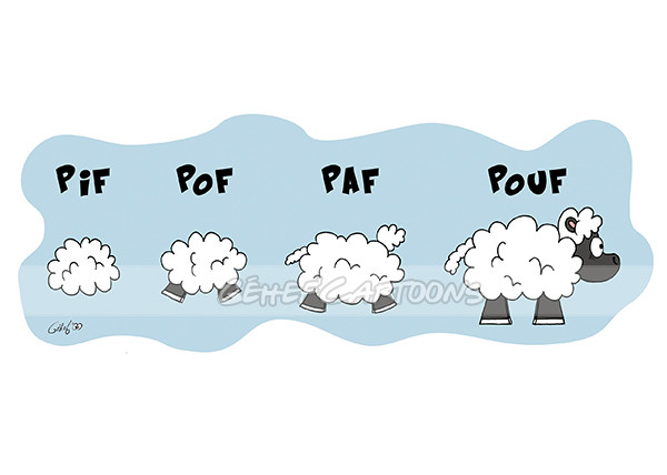 pifpafpouf-moutons-equichance.jpg