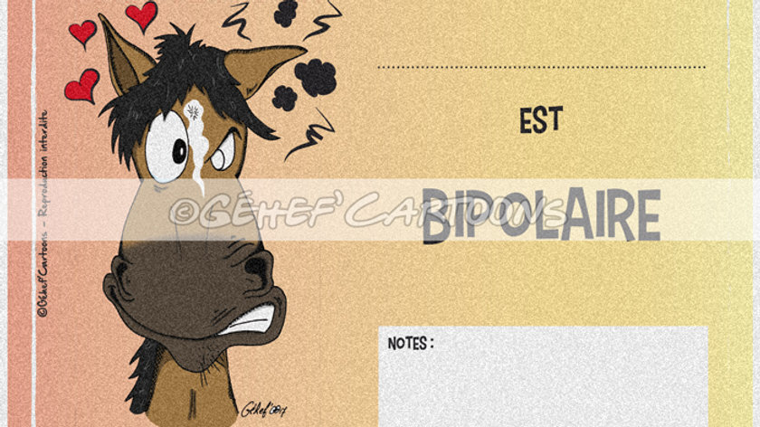 """Plaque BIPOLAIRE - Collection """"Canassons"""""""