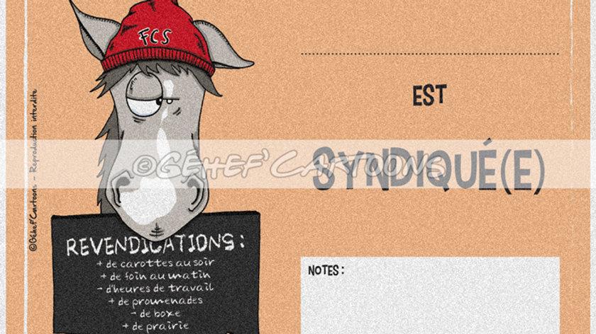 "Plaque SYNDIQUÉ - Collection ""Canassons"""