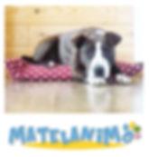 Matelanimo - Coussins pour chiens et chats