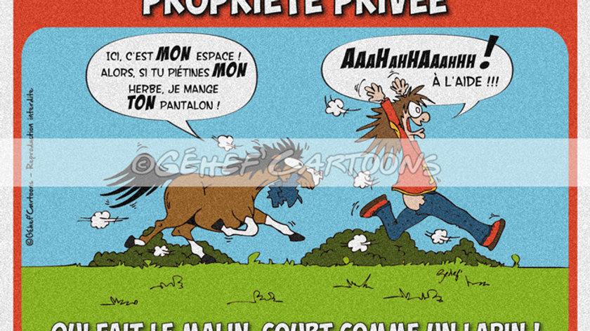 """Plaque PROPRIÉTÉ PRIVÉE - Collection """"Canassons"""""""