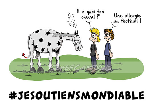 cheval-allergique-au-foot.jpg