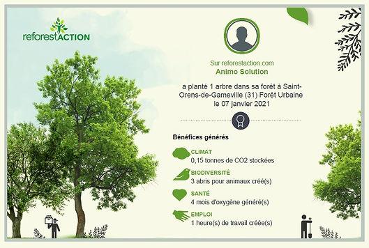 CERTIF 1 REFORESTACTION reforest039actio