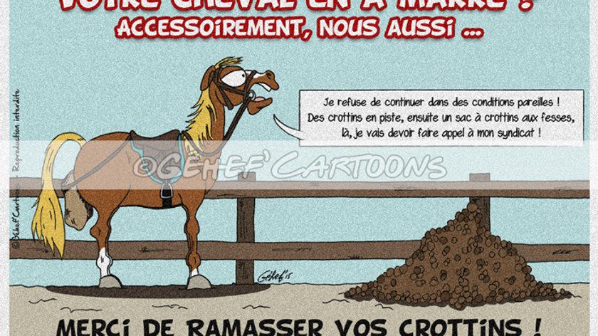 """Plaque CROTTINS DE PISTE - Collection """"Canassons"""""""