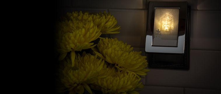 shop-hero-flowers3.jpg