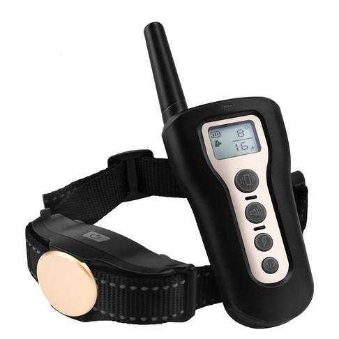 Dog Training With Collar-P320 (2).jpg