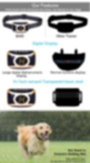 Dog Shock Collar-B400 (8).jpg