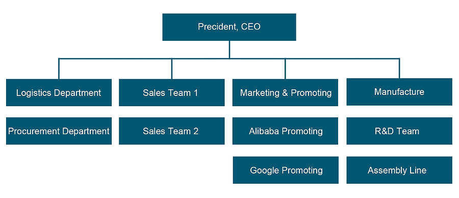 Company Structure.jpg
