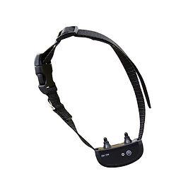 E Collar Training-WT162 (3).jpg