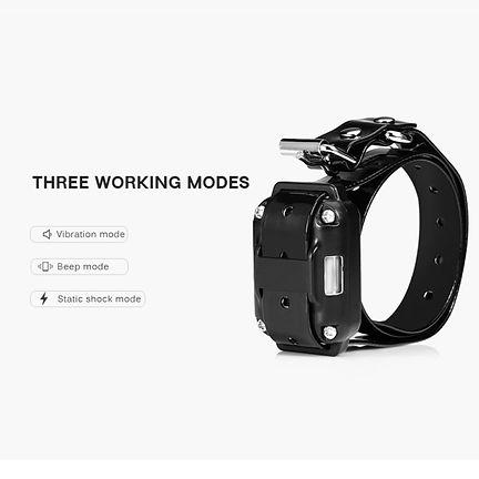 Aggressive Dog Training Collar-WT776 (7)
