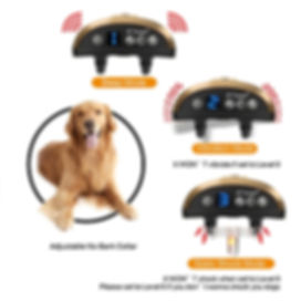 Dog Electric Collar-B110AB (9).jpg