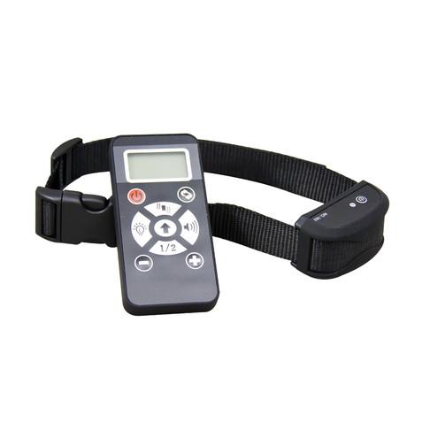 E Collar Training-WT162 (2).jpg