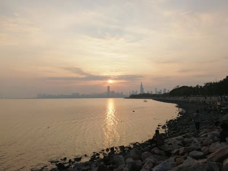Company Picnic in Shenzhen Bay Park. By Petdiary Dog Training Collars