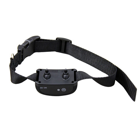 E Collar Training-WT162 (4).jpg