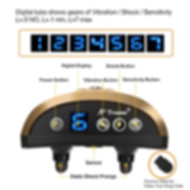 Dog Electric Collar-B110AB (11).jpg