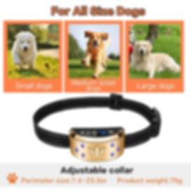 Dog Electric Collar-B110AB (7).jpg