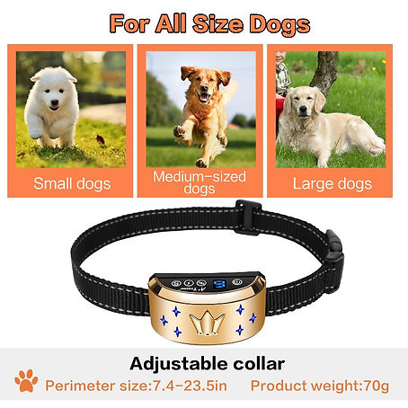 Dog Electric Collar-B110AB (7).jpg