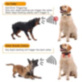 Dog Electric Collar-B110AB (10).jpg
