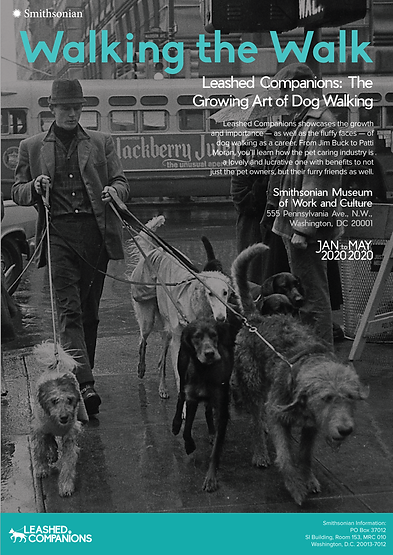 dog ads-08.png