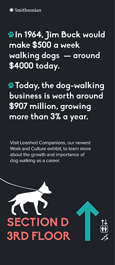 dog ads 2-02.png