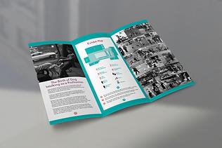 Brochure Mockup 3.png