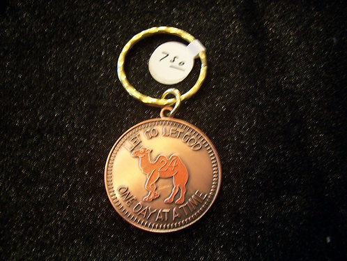 Camel with Color Key Chain