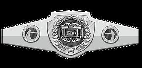 belt-3.png