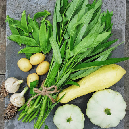 Grow Asian Vegetable: Water Spinach (Kangkong) in the UK