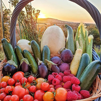 Grow your own. Summer harvest. Kitchen Garden Asian recipes.