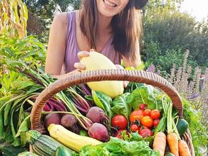 More Summer Harvest!