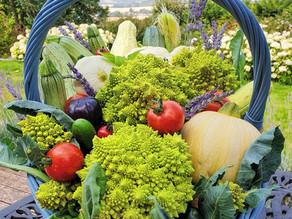 Summer Romanesco Harvest!