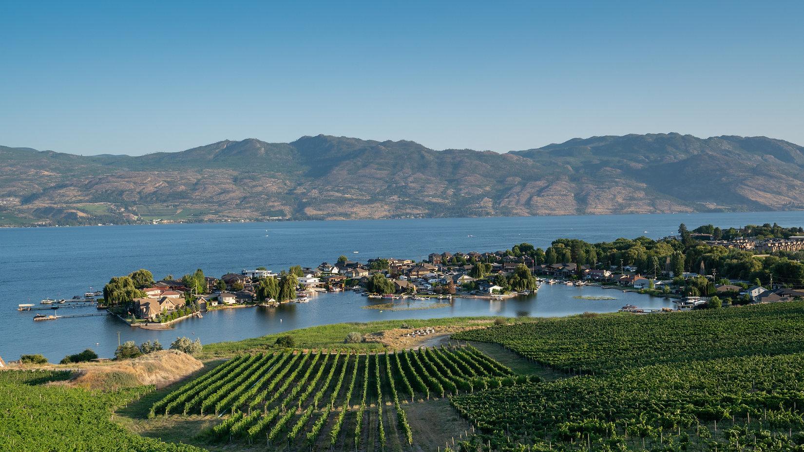 Summer Winery View. Aerial view of Kelow