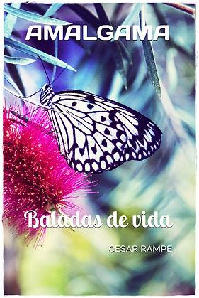 Amalgama Book Cover ESP 6.9 Frame.jpg