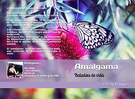 Amalgama Book Cover.jpg