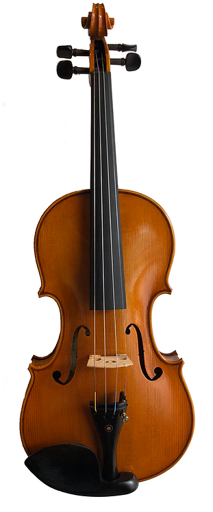 SJV-07 Professional Violin